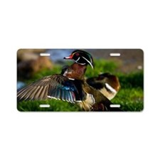 (1) Wood Duck Wing Aluminum License Plate