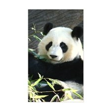 panda2 - Copy Decal