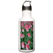 Red  White Tulips Water Bottle