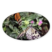 butterflies1-greet4440 Decal
