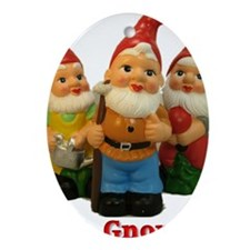 Got-Gnomes Oval Ornament