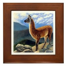 Guanaco Framed Tile