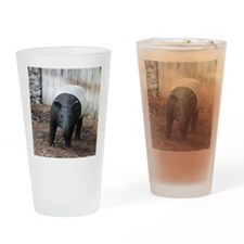tapir-Cstr Drinking Glass