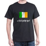 an bhfuil gaeilge agat? T-Shirt