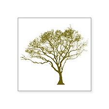 "Green Tree Square Sticker 3"" x 3"""