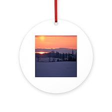 twenty-first download 079edsix Round Ornament