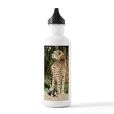 IMG_4115 Water Bottle