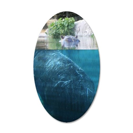 IMG_8352 35x21 Oval Wall Decal