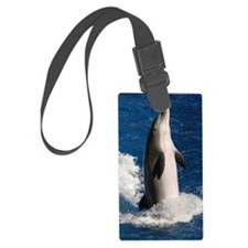 dolphin2 Luggage Tag