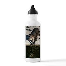 IMG_2453 Water Bottle