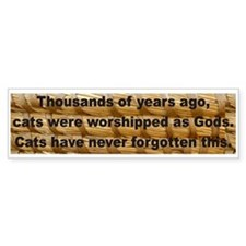 """Long Memories"" Bumper Bumper Sticker"