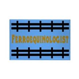 Ferroequinology is Fun Rectangle Magnet (100 pack)