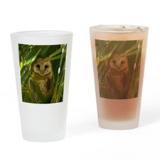 Palm Tree Owlet Drinking Glass