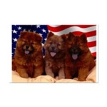 Proud Chow Puppies Mini Poster Print