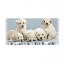 cute_puppies-normal Aluminum License Plate