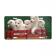 wagonload_of_samoyed_puppie Aluminum License Plate