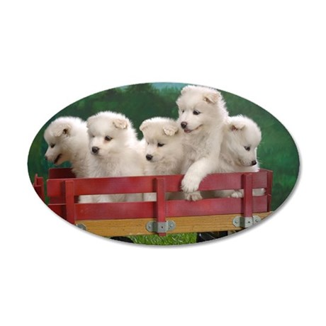 wagonload_of_samoyed_puppies 35x21 Oval Wall Decal