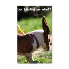 Basset 211 Wall Decal