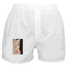 colbo_dark Boxer Shorts
