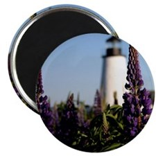 Pemaquid keepsake Magnet