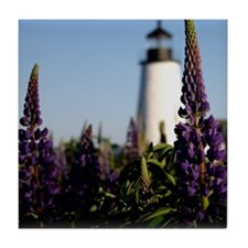 Pemaquid keepsake Tile Coaster