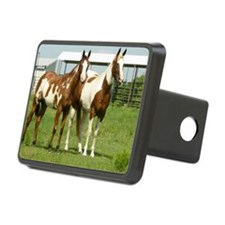 Tracy and Spirit Rectangular Hitch Cover