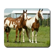 Tracy and Spirit Mousepad