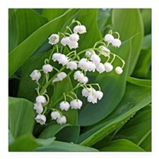 "lilyofthevalley Square Car Magnet 3"" x 3"""