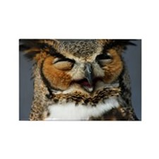 Laughing  Owl Rectangle Magnet
