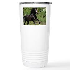 IMG_5228 Stein Ceramic Travel Mug