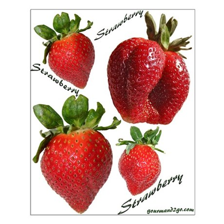 Strawberries Small Poster