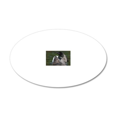 coloIMG_1235 20x12 Oval Wall Decal
