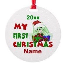 1st Christmas Bunny Personalized Ornament