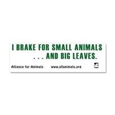 I brake Car Magnet 10 x 3