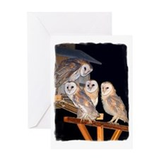 3-4owls_adj Greeting Card