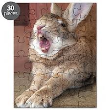 HB028-OzzyYawn Puzzle