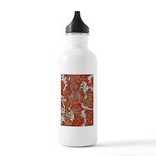 Shasta1 Water Bottle