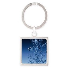 bubbles Square Keychain