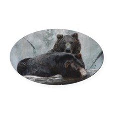 bears Oval Car Magnet