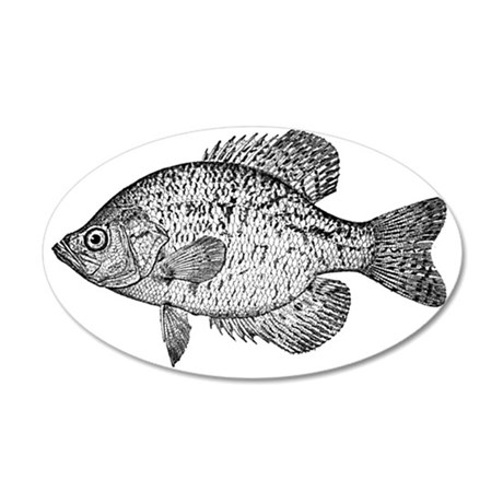 2-crappie 35x21 Oval Wall Decal