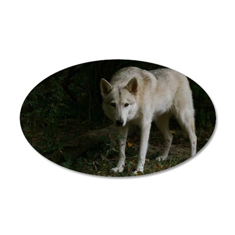 2011_5 35x21 Oval Wall Decal