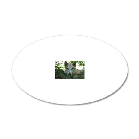 2011_3 20x12 Oval Wall Decal