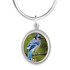 Blue Jay Silver Oval Necklace