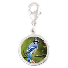 Blue Jay Silver Round Charm