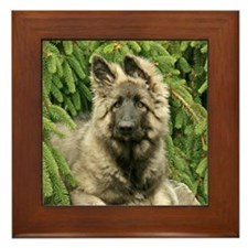 wildeshots-051310b 299b(6x6) Framed Tile