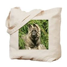 wildeshots-051310b 299b(6x6) Tote Bag