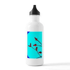 10 6665 ocotillo HC Water Bottle