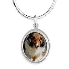 Shetland Sheedog Agility Beau Silver Oval Necklace