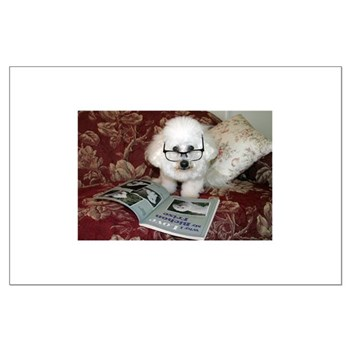 You just Gotta Love a Bichon Large Poster