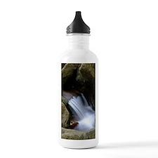 Waterfall 4 Water Bottle